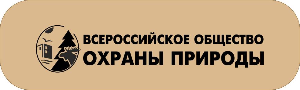 ВООП.png